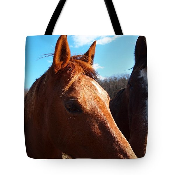 two horses in love Tote Bag by Robert Margetts