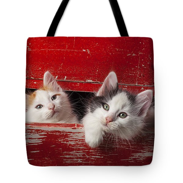 Two Kittens In Red Drawer Tote Bag by Garry Gay
