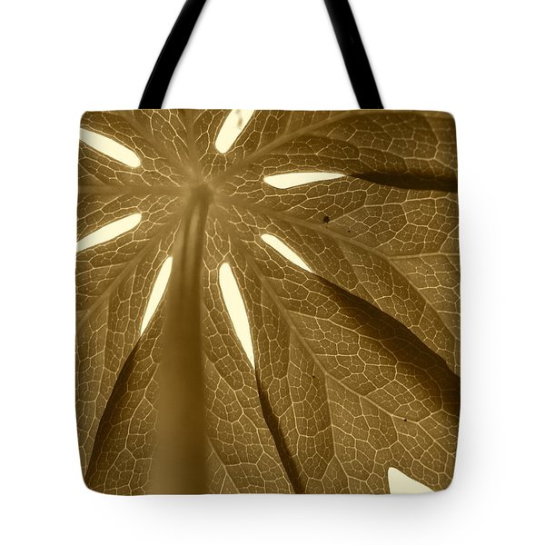 Umbrella In Sepia Tote Bag by JD Grimes