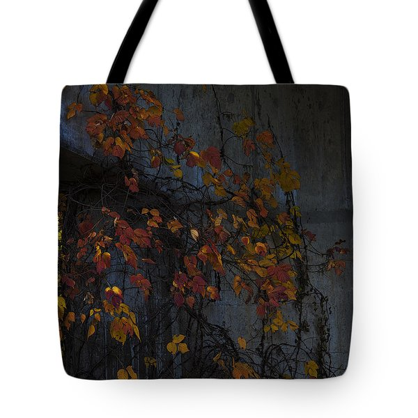 Under The Overpass Tote Bag by Ron Jones