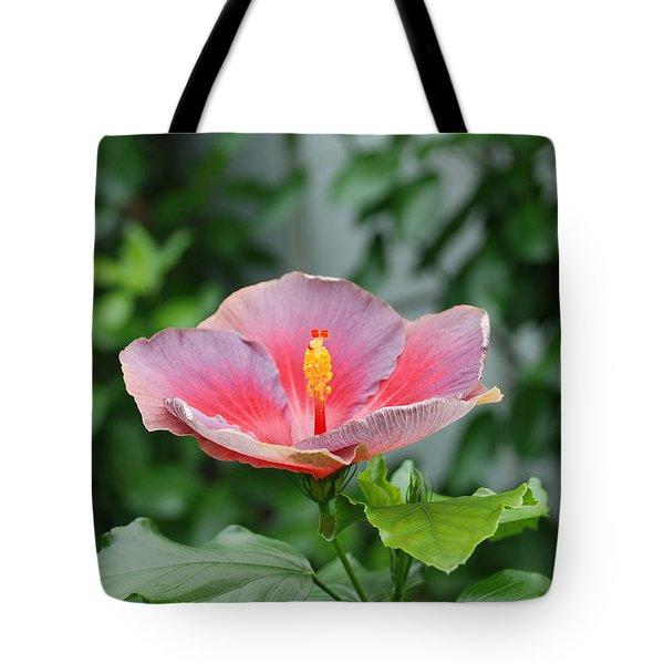 Unusual Flower Tote Bag by Jennifer Lyon