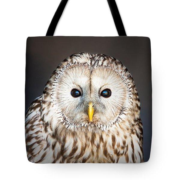 Ural owl Tote Bag by Tom Gowanlock