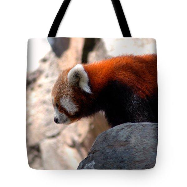 Valley Of The Red Panda Tote Bag by LeeAnn McLaneGoetz McLaneGoetzStudioLLCcom