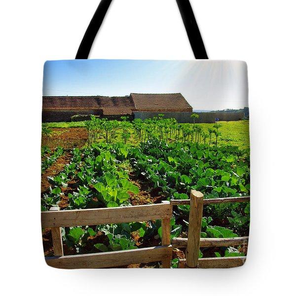 Vegetable Farm Tote Bag by Carlos Caetano