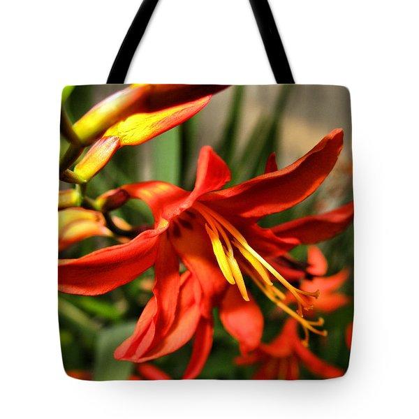 Vibrant Crocosmia Tote Bag by Joyce Dickens
