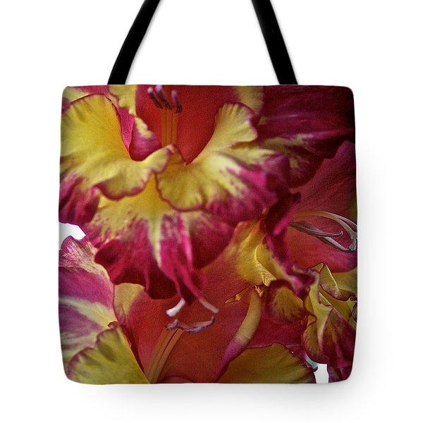 Vibrant Gladiolus Tote Bag by Susan Herber
