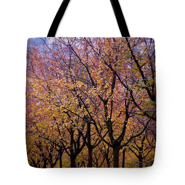 View Of Prague From Mala Strana Park Tote Bag by Axiom Photographic