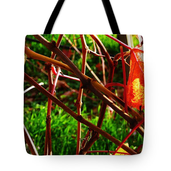Vineyard 15 Tote Bag by Xueling Zou