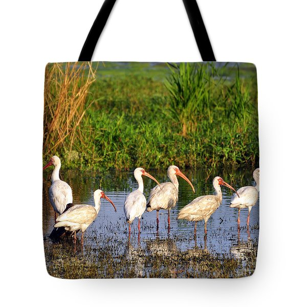 Wading Ibises Tote Bag by Al Powell Photography USA