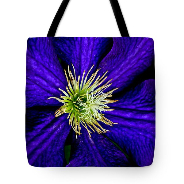 Wall Flower Tote Bag by Frozen in Time Fine Art Photography