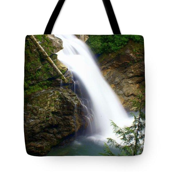 Washington Falls 2 Tote Bag by Marty Koch