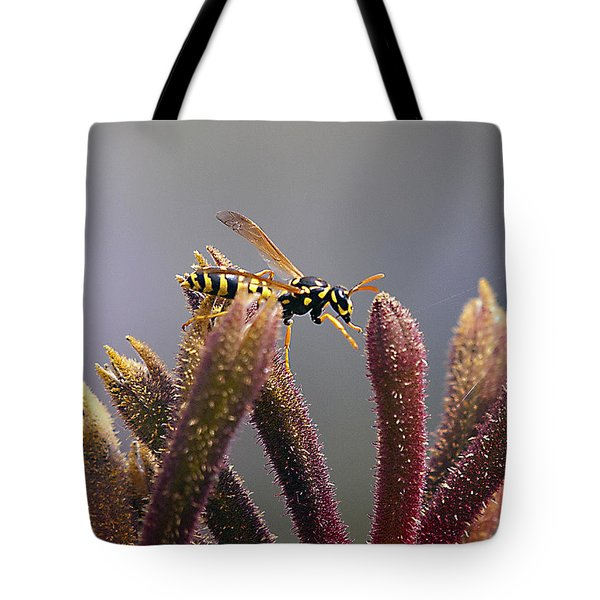 Waspage In The Kangaroo Paw Tote Bag by Joe Schofield
