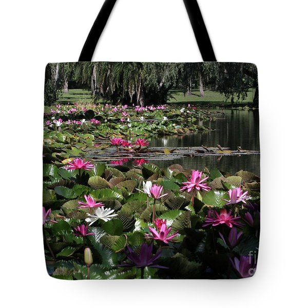 Water Lilies In The St. Lucie River Tote Bag by Sabrina L Ryan