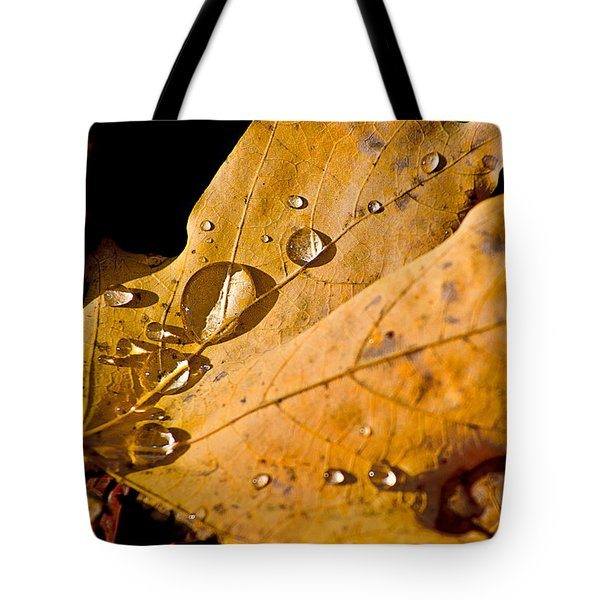 Waterfall Tote Bag by Burney Lieberman