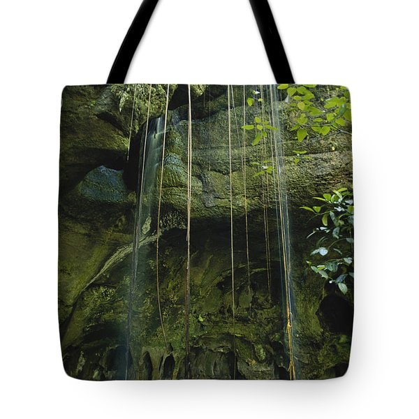 Waterfalls  Tote Bag by Jacques Jangoux and Photo Researchers