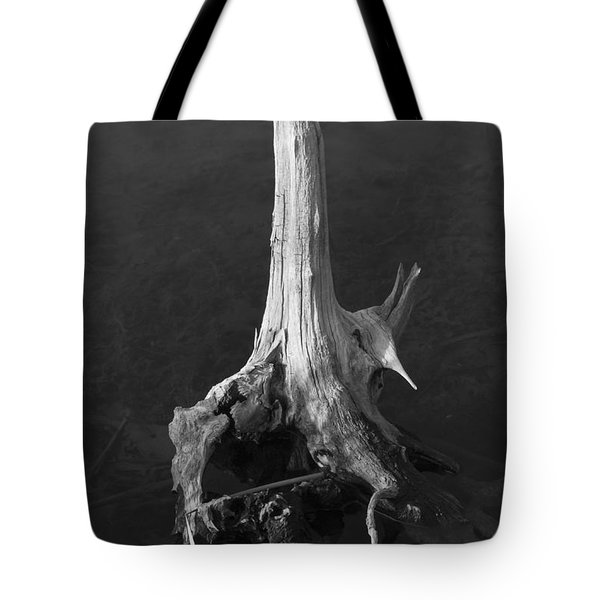 Weathered Stump Tote Bag by David Gordon