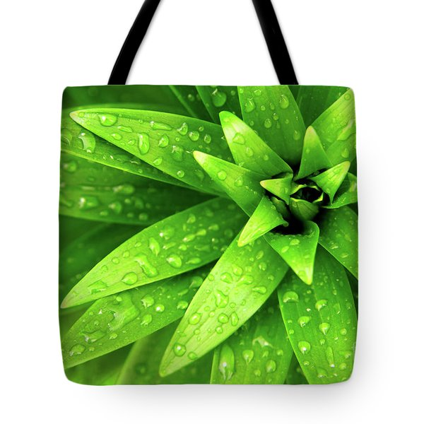 Wet Foliage Tote Bag by Carlos Caetano