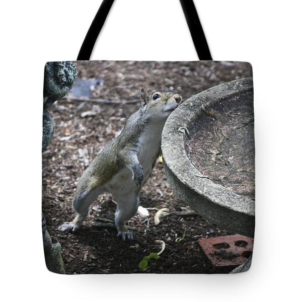 Whadaya Mean There Is No Water Tote Bag by Teresa Mucha