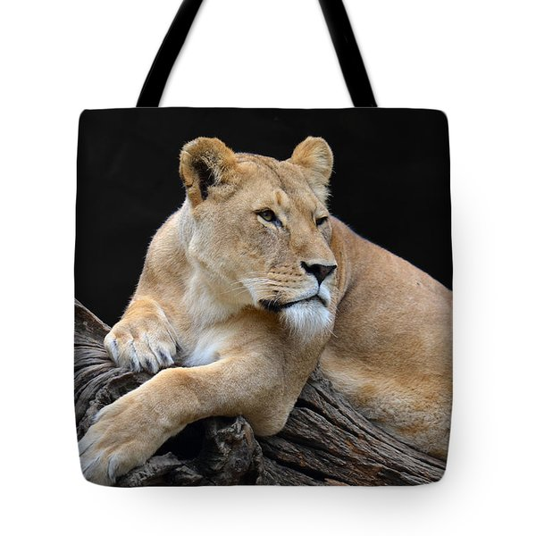 What Is Over There Tote Bag by Eva Kaufman