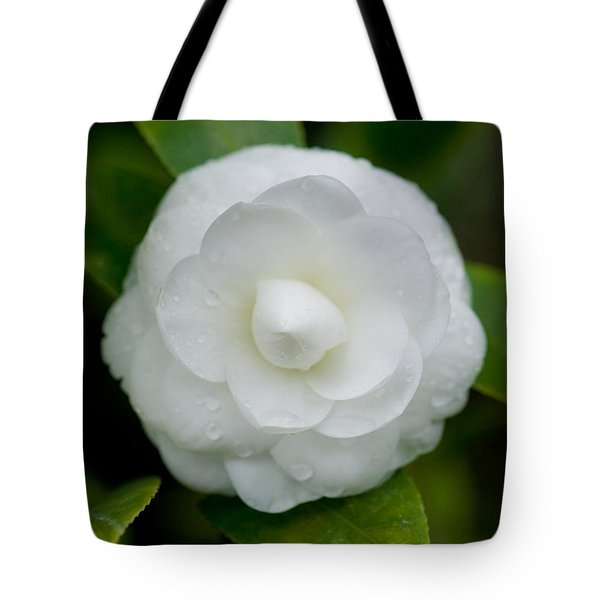 White Camellia Tote Bag by Rich Franco