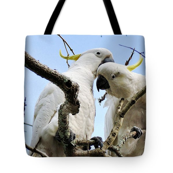 White Cockatoos Tote Bag by Kaye Menner