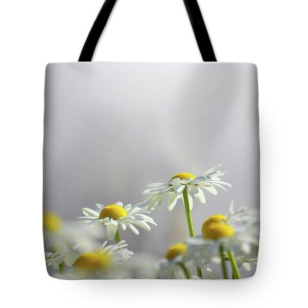 White Daisies Tote Bag by Carlos Caetano