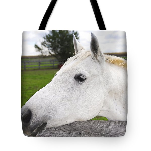 White horse Tote Bag by Elena Elisseeva