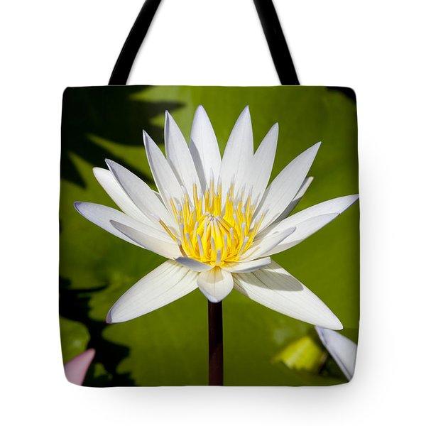 White Lotus Tote Bag by Kelley King
