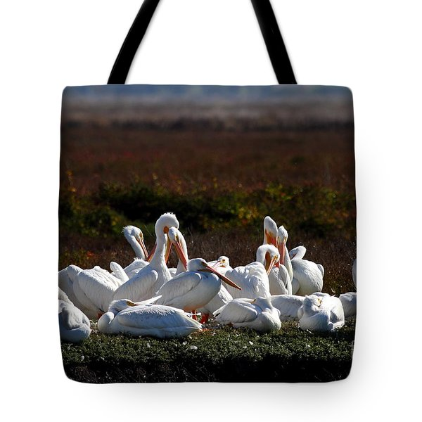 White Pelicans Tote Bag by Wingsdomain Art and Photography