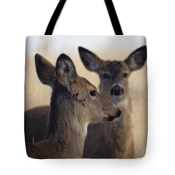 Whitetail Deer Tote Bag by Ernie Echols