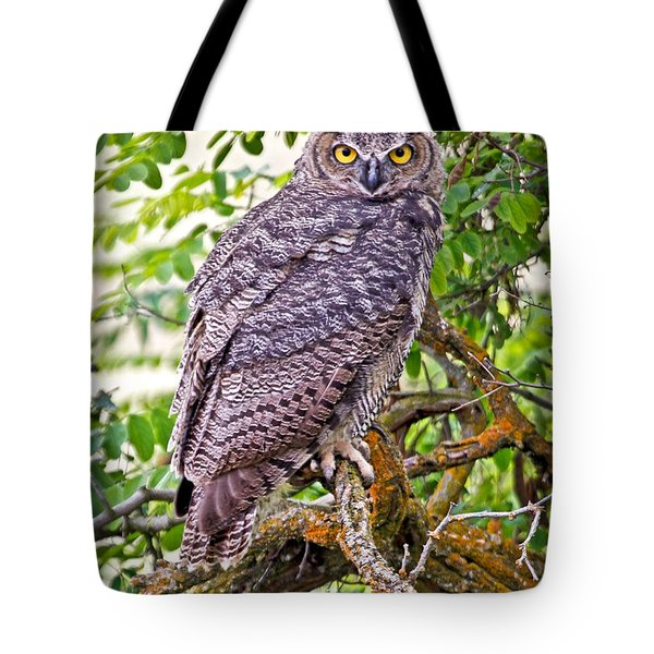 Who Gives A Hoot Tote Bag by Athena Mckinzie