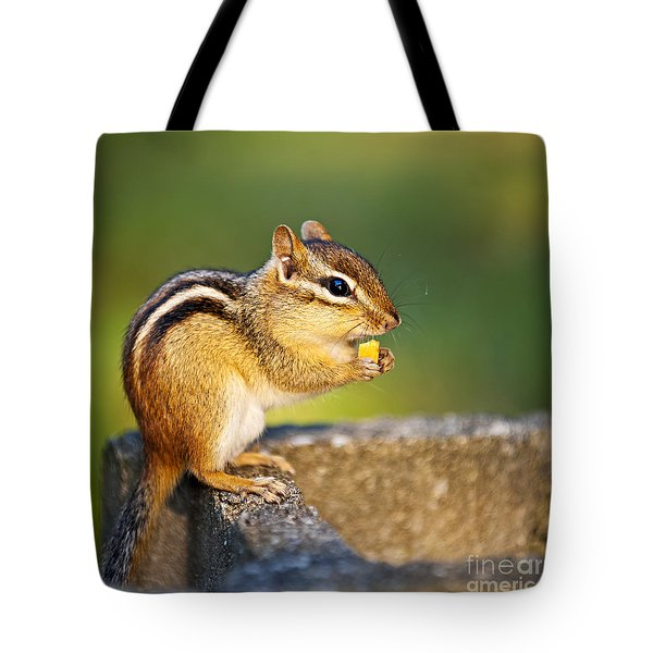 Wild chipmunk  Tote Bag by Elena Elisseeva