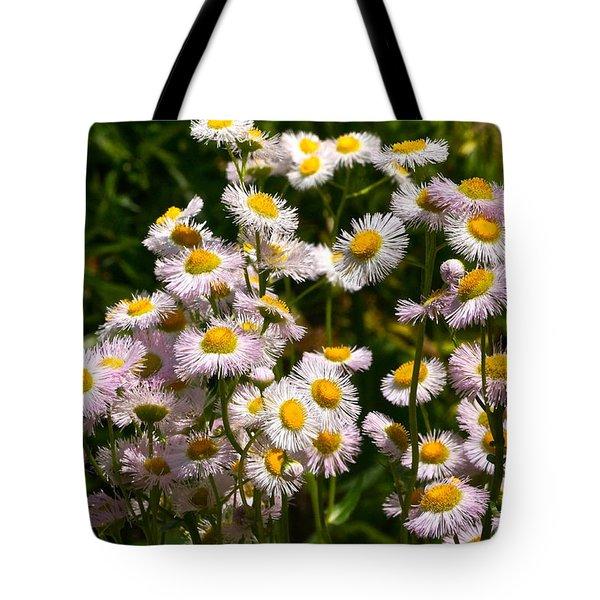 Wild Daisies Tote Bag by Byron Varvarigos