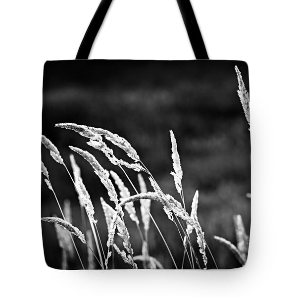 Wild Grass In Black And White Tote Bag by Elena Elisseeva