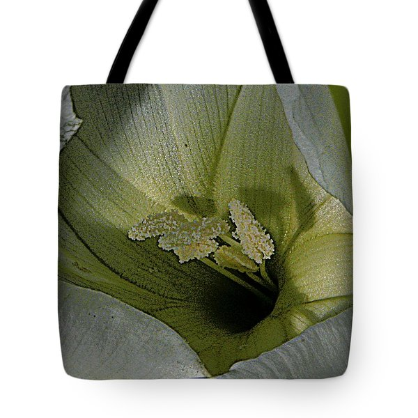 Wildflower Window Tote Bag by Chris Berry