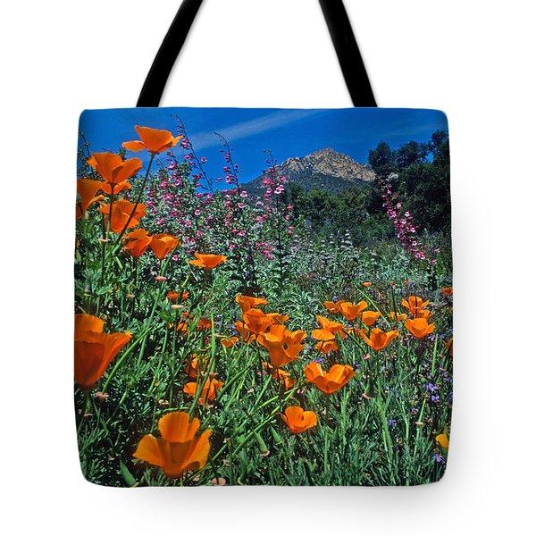 Wildflower Wonderland Tote Bag by Kathy Yates