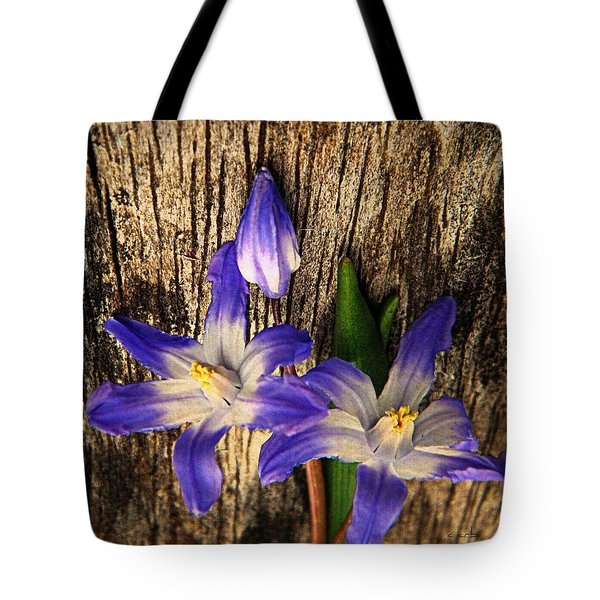 Wildflowers On Wood Tote Bag by Chris Berry