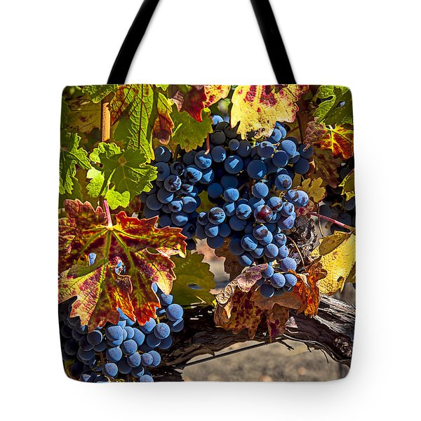 Wine grapes Napa Valley Tote Bag by Garry Gay