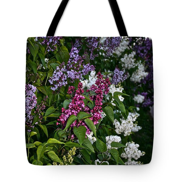 Winning Color Tote Bag by Susan Herber