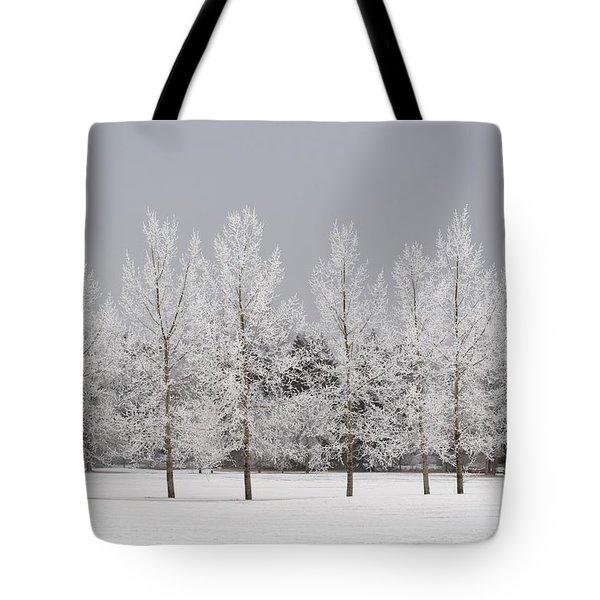 Winter, Calgary, Alberta, Canada Tote Bag by Michael Interisano