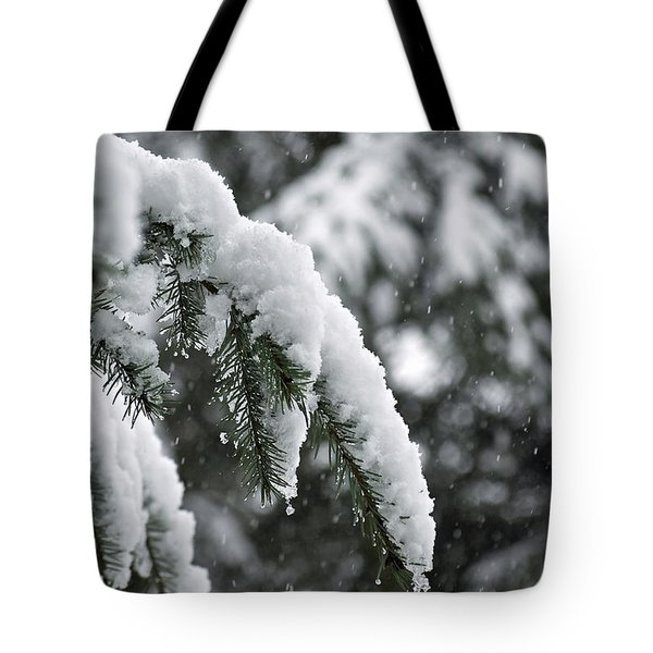 Winter Charm Tote Bag by Gwyn Newcombe