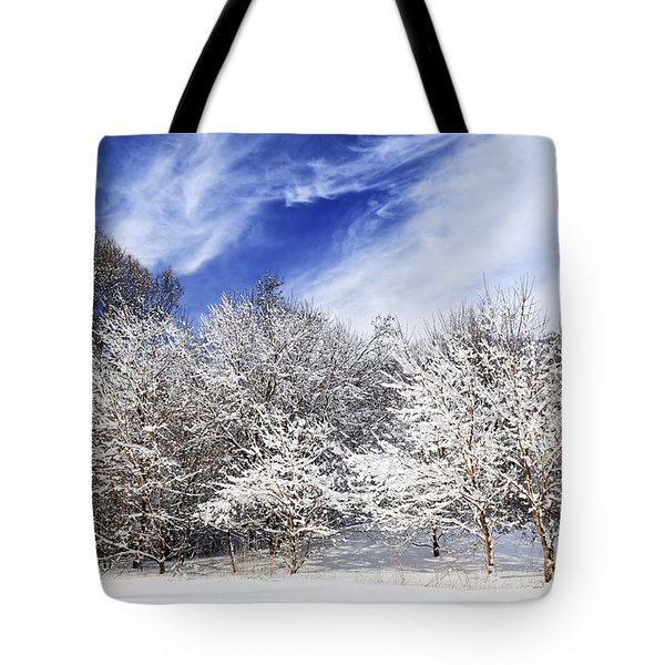 Winter Forest Covered With Snow Tote Bag by Elena Elisseeva