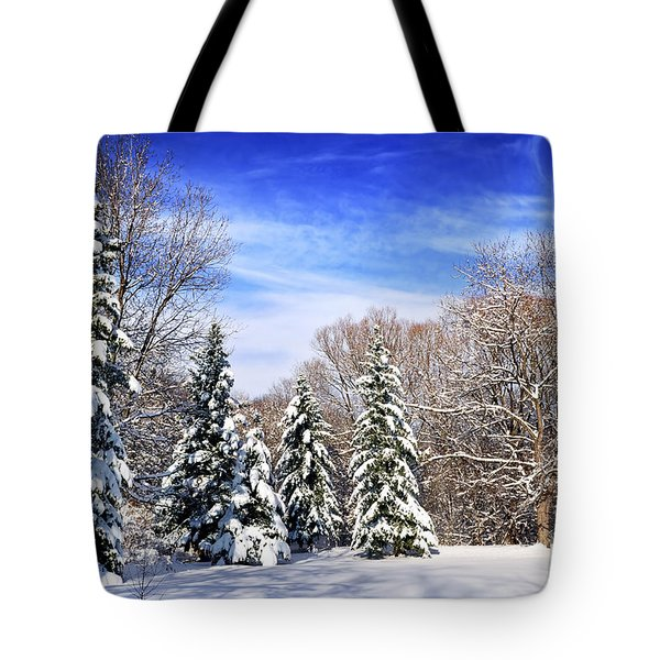 Winter forest with snow Tote Bag by Elena Elisseeva