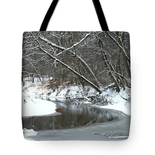 Winter In The Park Tote Bag by Kay Novy