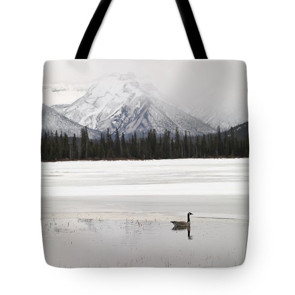 Winter Landscape, Banff National Park Tote Bag by Keith Levit
