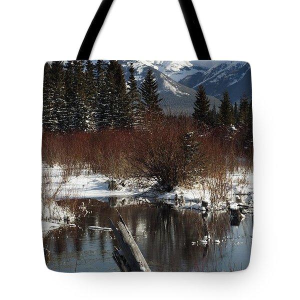 Winter Over Vermilion Lake, Banff Tote Bag by Michael Interisano