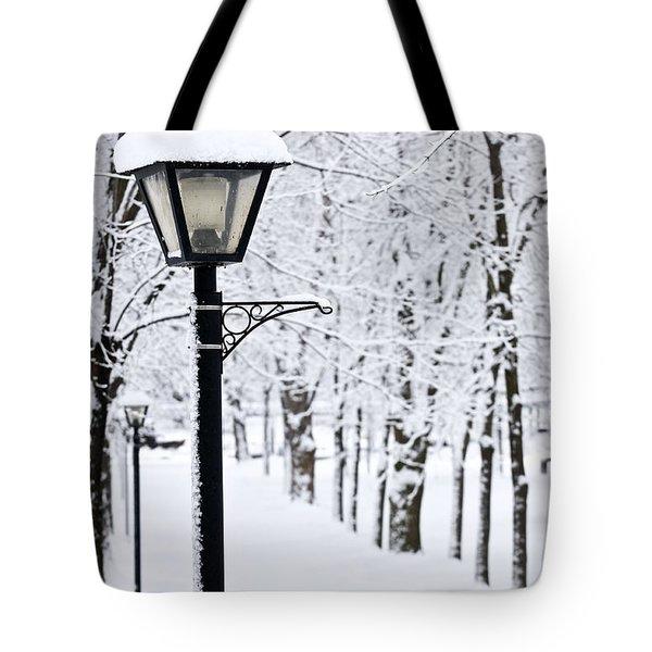 Winter park Tote Bag by Elena Elisseeva
