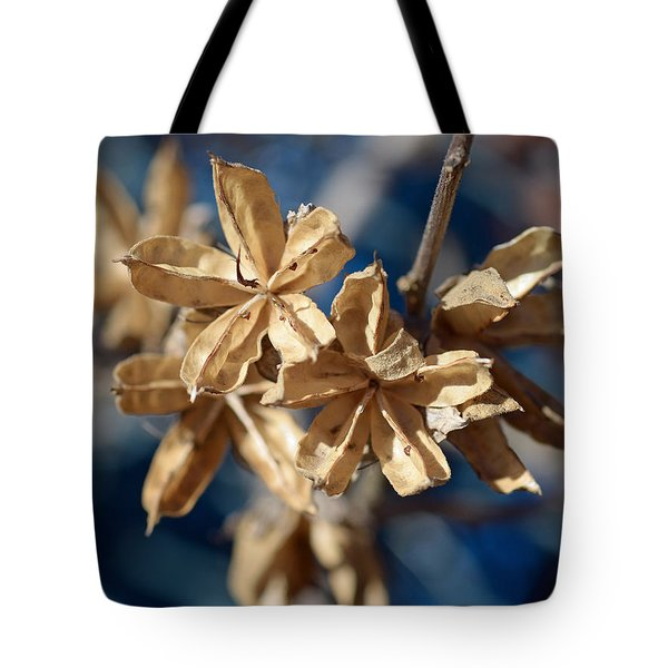 Winter Remainder Tote Bag by Lisa  Phillips