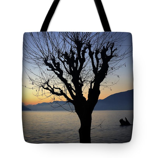 Winter Tree Tote Bag by Joana Kruse