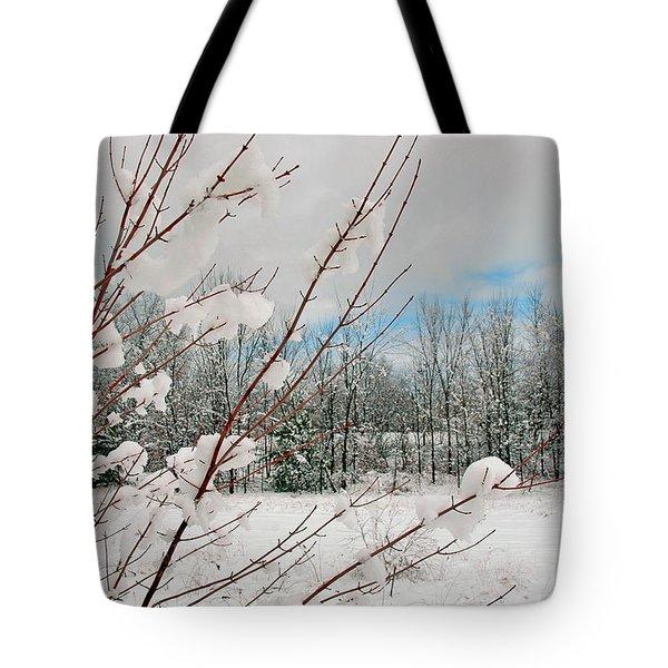 Winter Woods Tote Bag by Joann Vitali